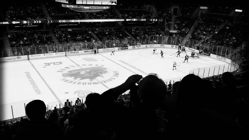 Hockey Game - Fan Experience