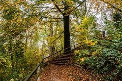 Höhenweg im Herbst