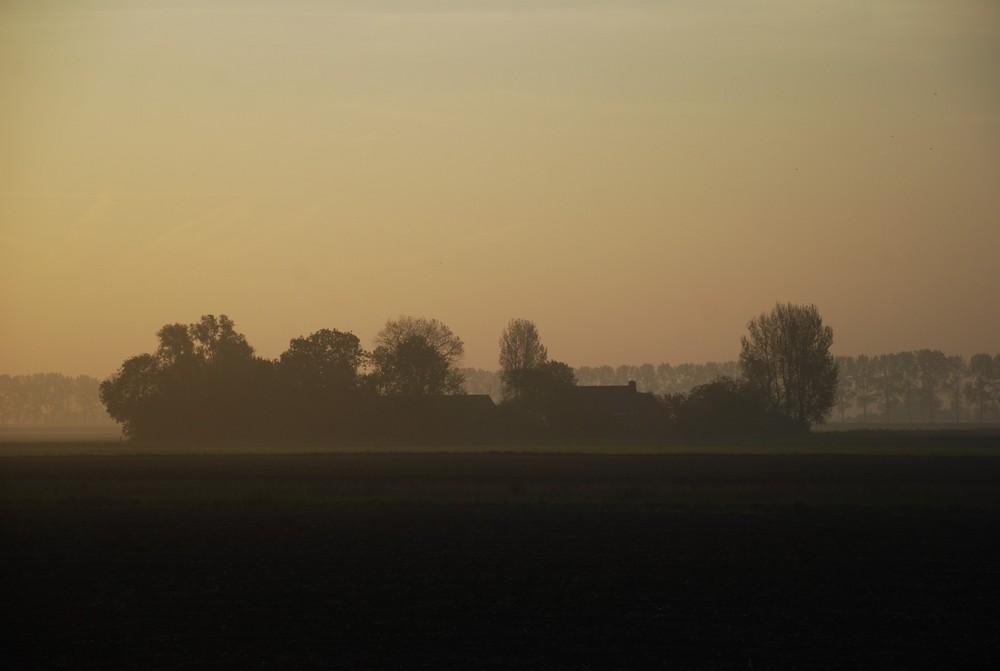 Hof im Morgenlicht