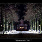 Hofgarten Düsseldorf @ Night
