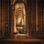 Hoher Dom zu Köln .... am 4. Advent