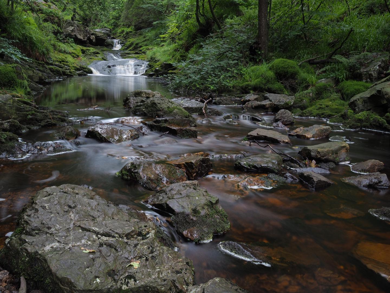 Hohes Venn Wasserlauf
