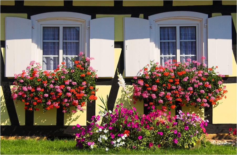 Hohwiller 2, Frankreich, Elsaß