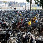 Holländer sind die Meister im Fahrrad finden