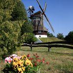 Holländer-Windmühle