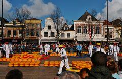 """"""" Holland ist für Käse gut """""""
