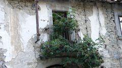 Holunder auf dem Balkon eines verlassenen Hauses in Paladini, Abruzzen