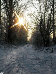 *Holy Winter*
