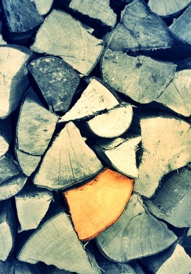 Holz erzählt Geschichtem