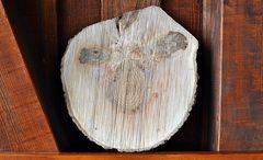 ~~~ Holz hat viele Gesichter ~~~