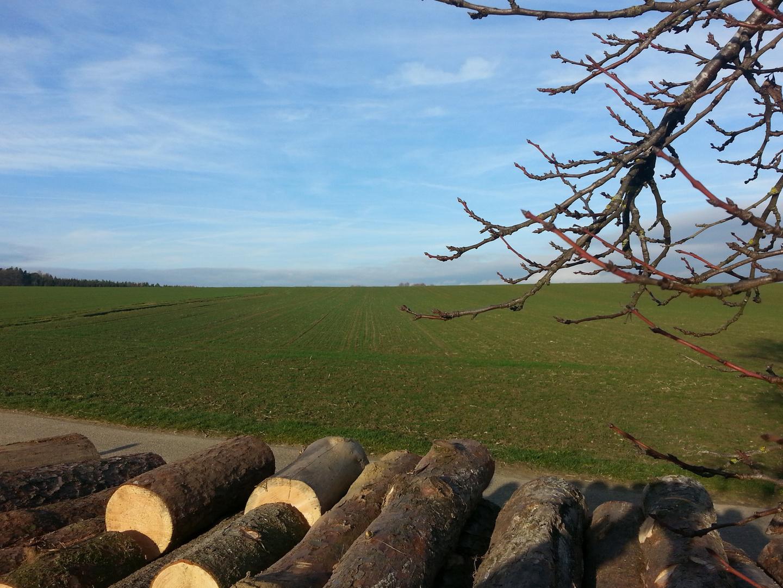 Holz in der Landschaft