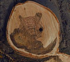Holz-Kunst, Original