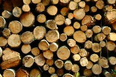 Holz Polter