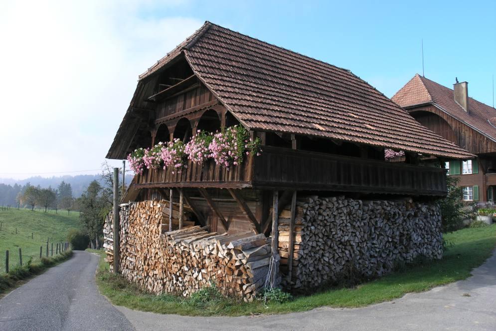 Holz vor dem Haus !