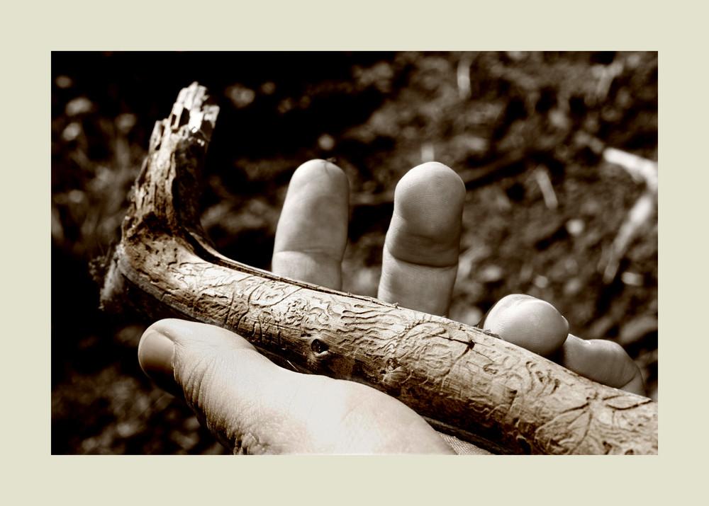 Holzböcke kreativ