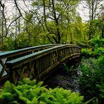 Holzbrücke #2
