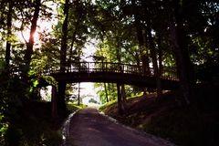 Holzbrücke im Jenischpark