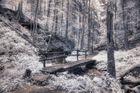 Holzbrücke [IR]