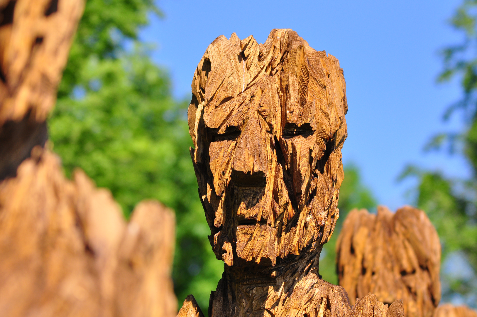 Holzkopf Foto & Bild | abstraktes, formen, holz Bilder auf