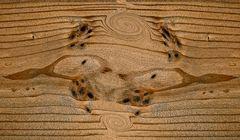 Holzkunst: eine Fantasiewelt auf einem Brett... - Un monde fantaisiste sur une planche de bois.