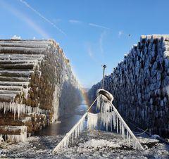 Holzlager heute Vormittag (2)