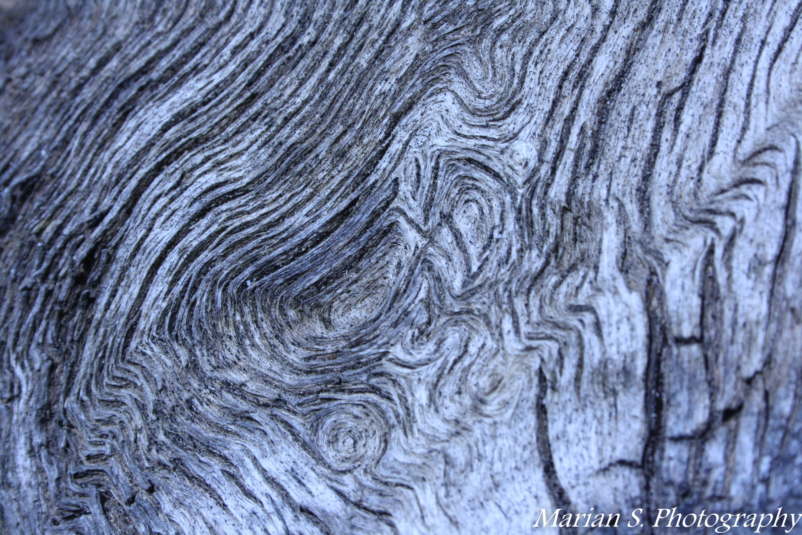 Holzmaßerung