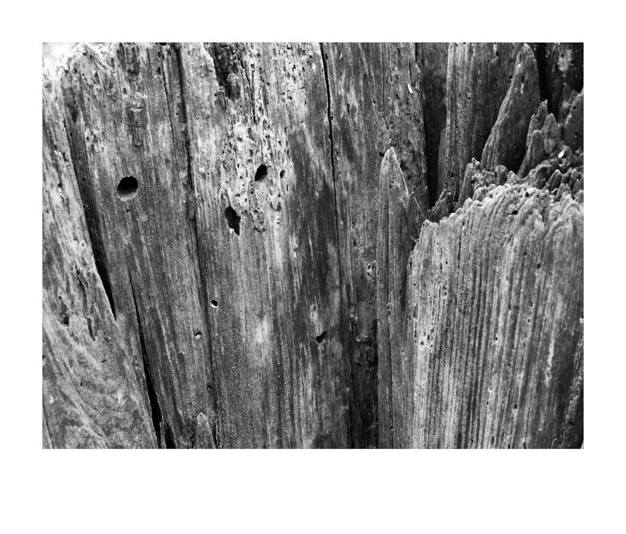 Holzmuster I
