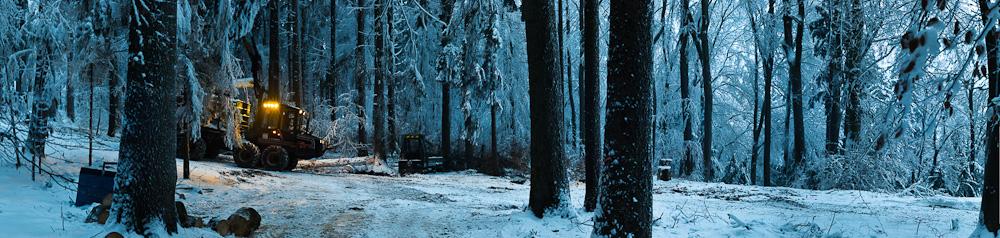 Holzsammler im Eiswald
