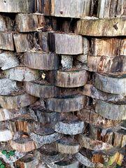 Holzscheiben Wand