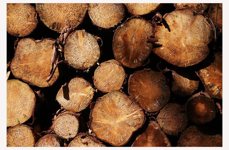 Holzstoß