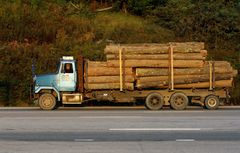 Holztransporter mit spezieller Bereifung, West Virginia, USA