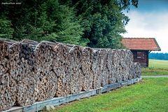 Holzwirtschaft 2 in Seewald-Besenfeld