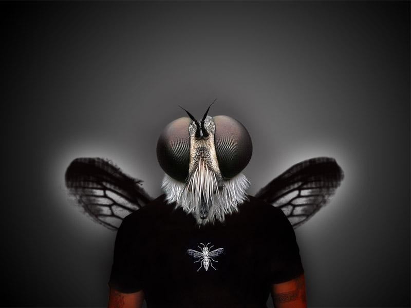 hombre mosca