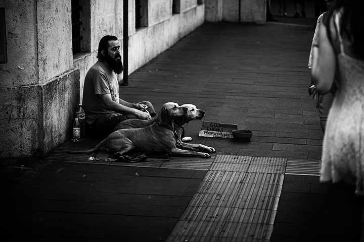 Homless Man with His Dogs, Rome