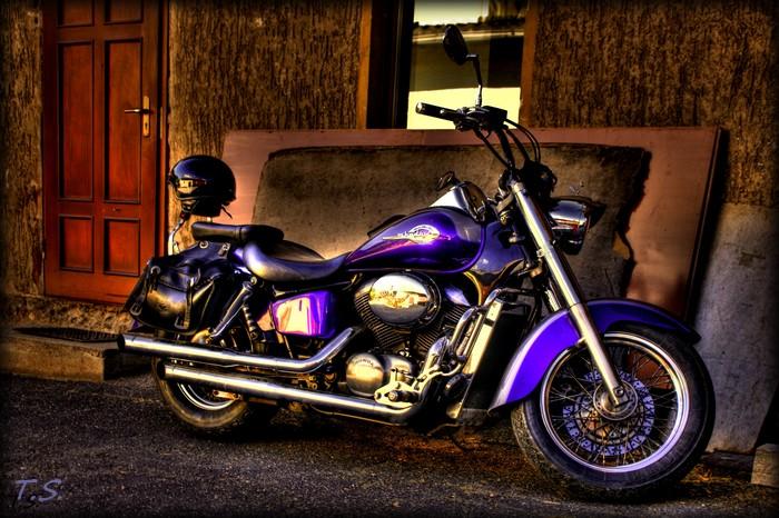 Honda Shadow.