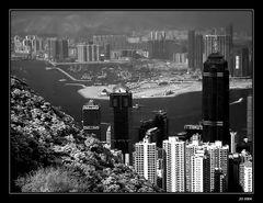 Hong Kong City..