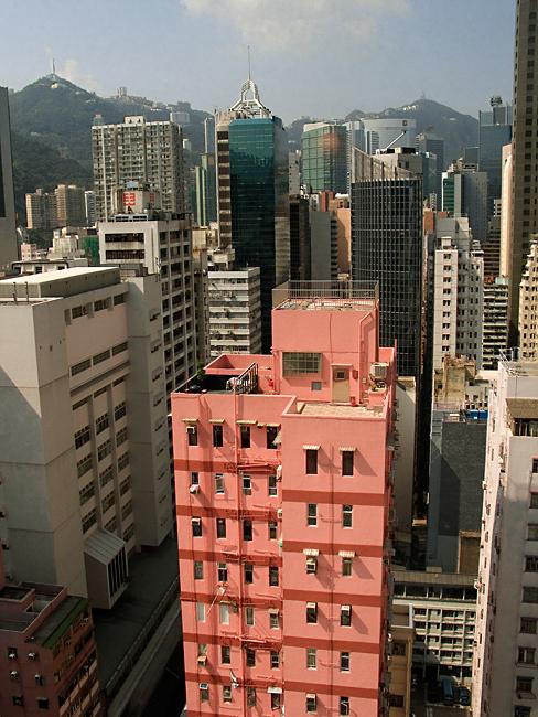 Hong Kong Pink