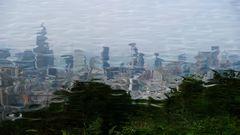 Hongkong im Teich?