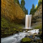 Hood Forest Falls