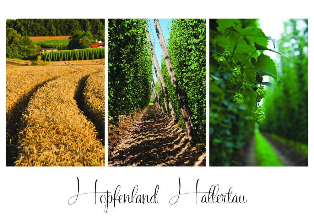 Hopfenland Hallertau
