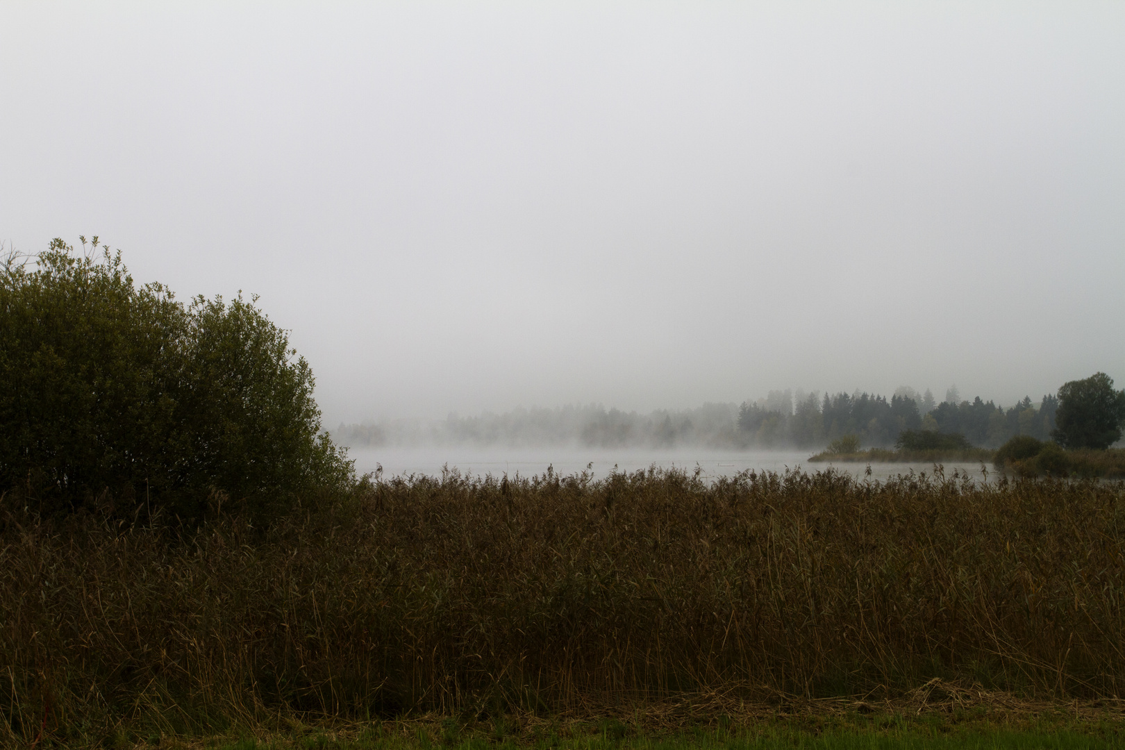 Hopfensee am Herbstmorgen