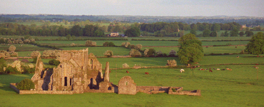 Hore Abbey (Cashel, Irland)