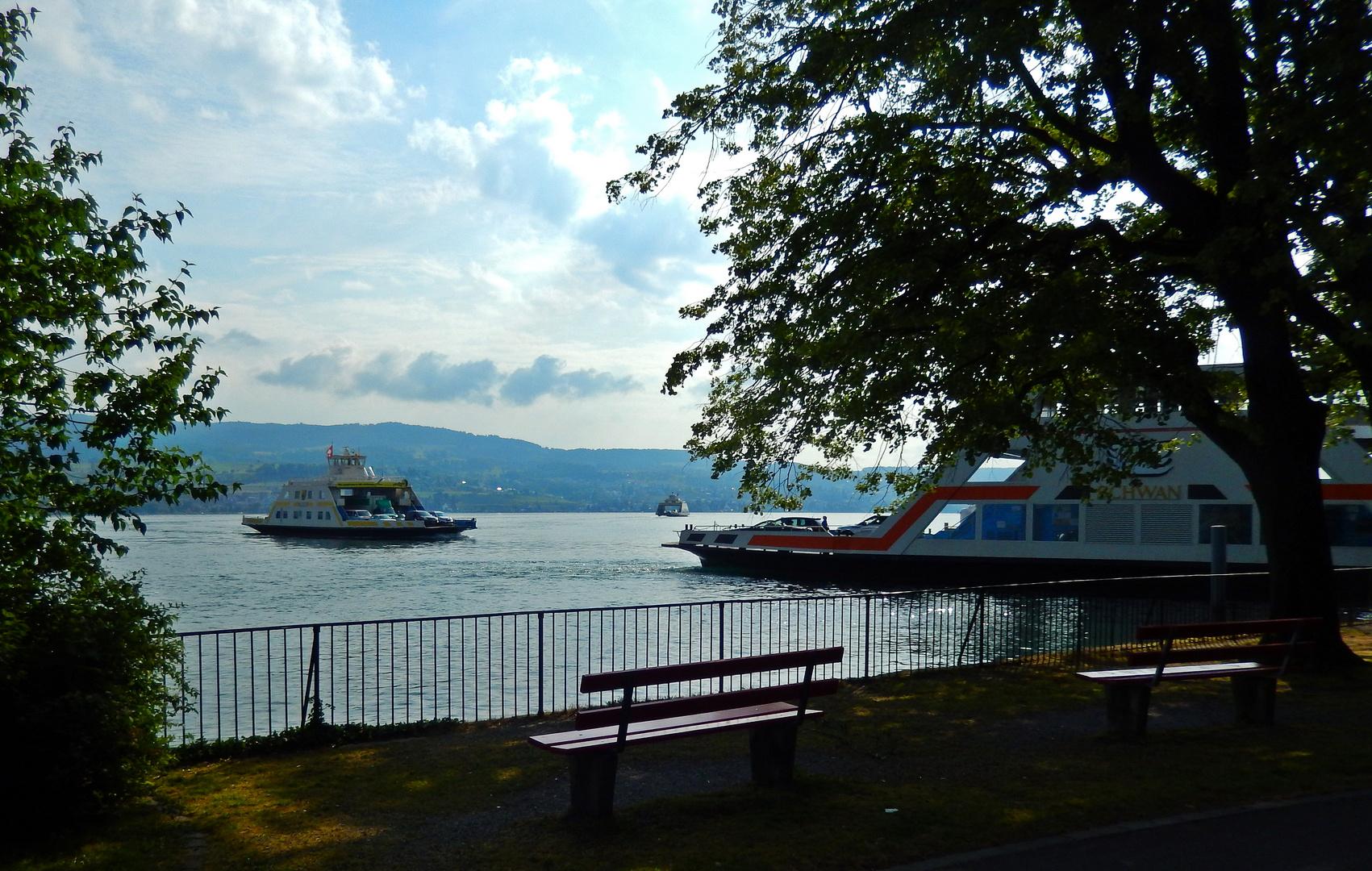 Horgen & Zürichsee.03