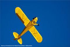 Horizon Air Meet 2012 - #19