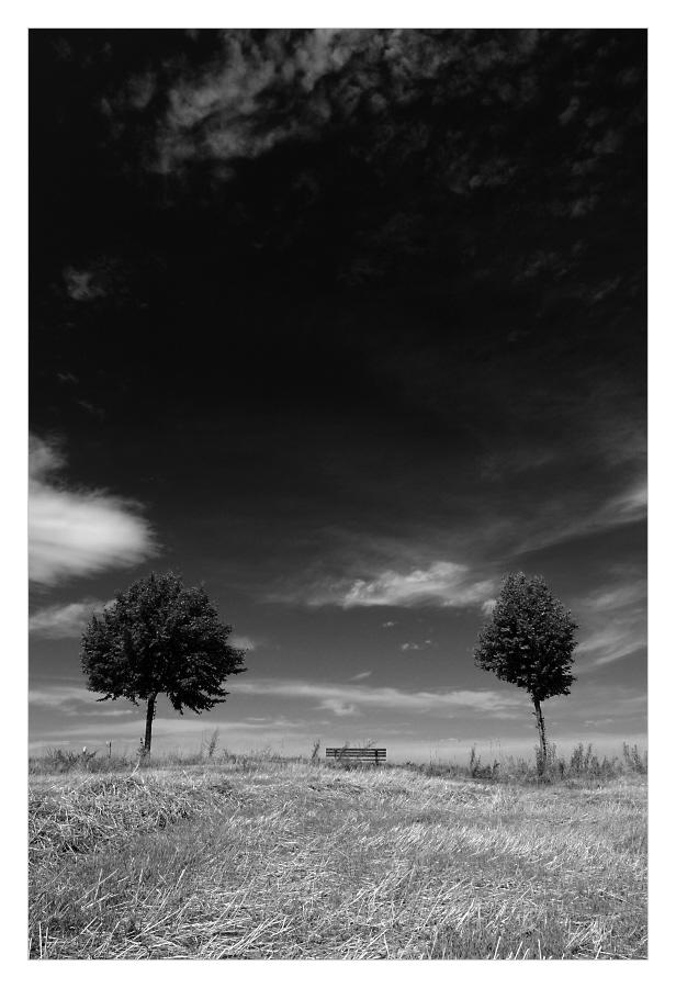 Horizontportraits - 1