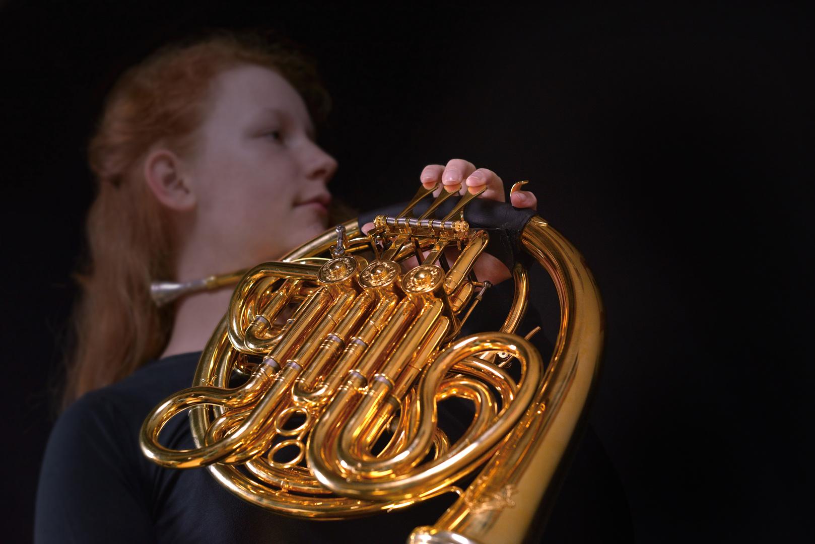 Horn-nisse