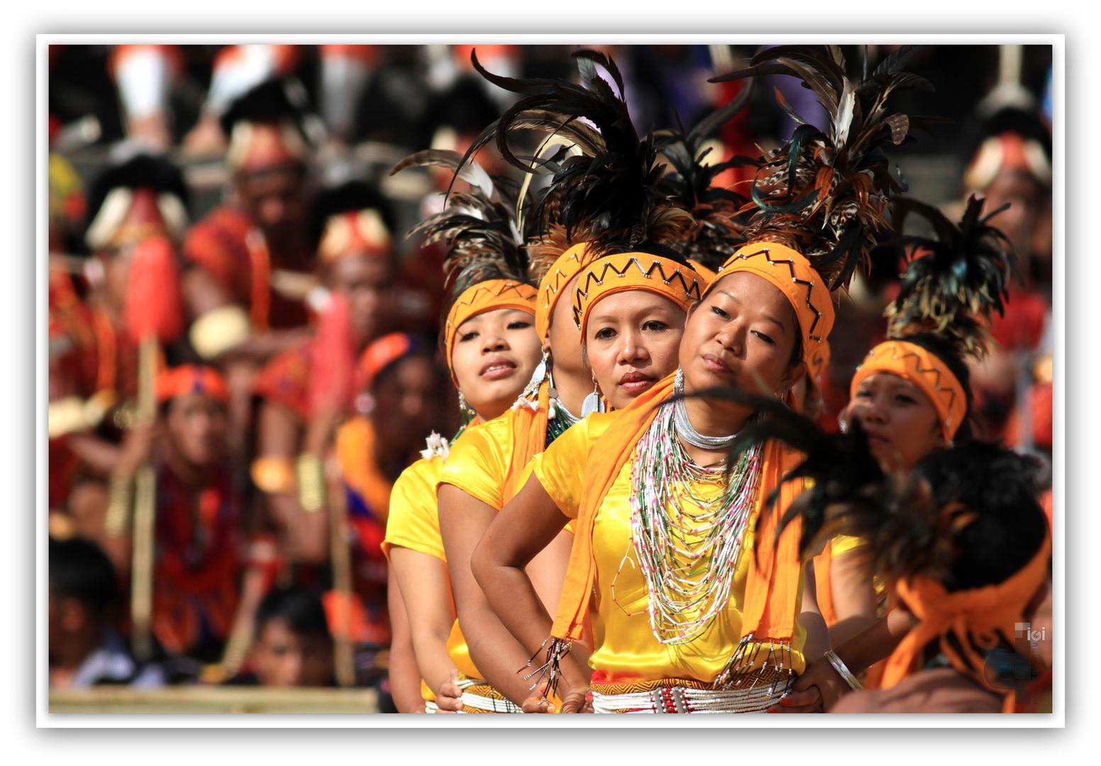 Hornbill festival Nagaland 2014