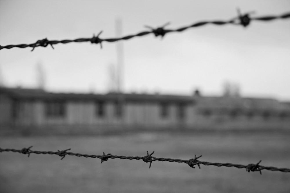 Horror fence