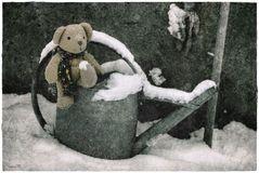 Horschti Schneefuß