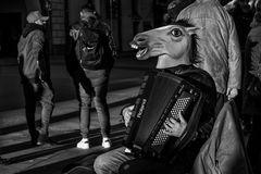 Horse Musician